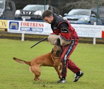 Protection national championships