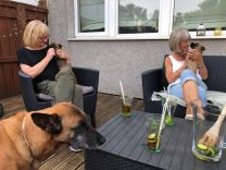 Pimms and puppies lol